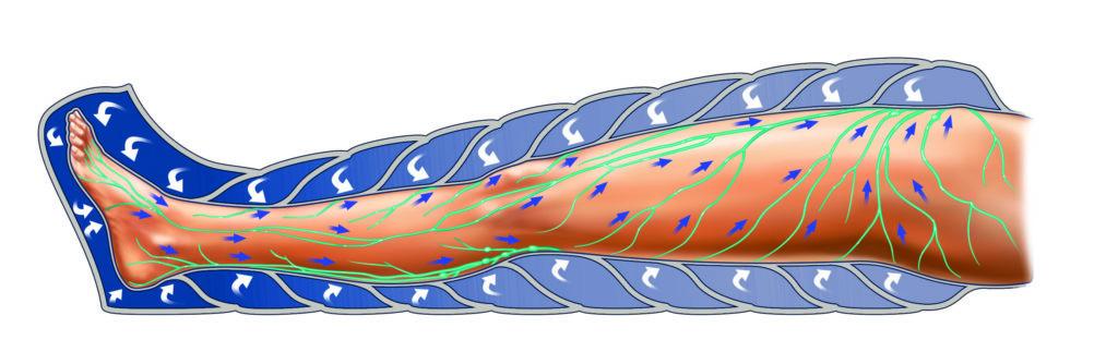 Lymphastim Werking